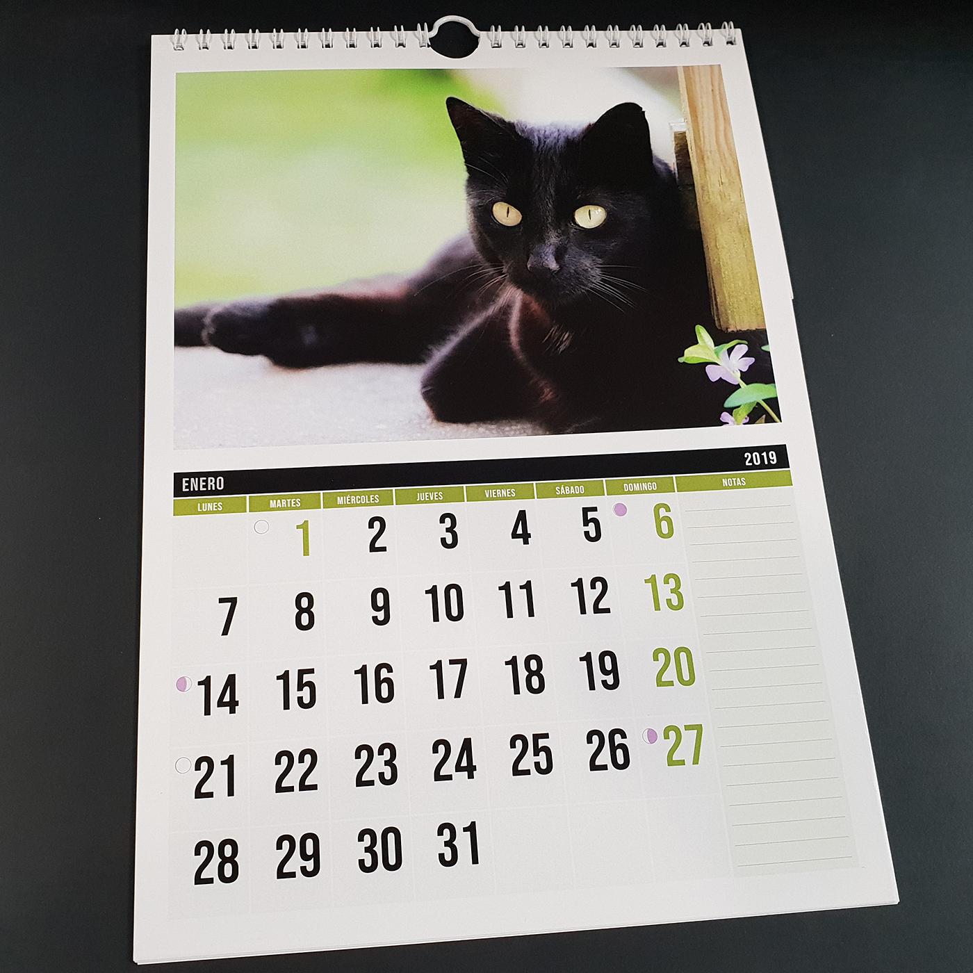 Calendario Din A4.Calendario De Pared Din A4